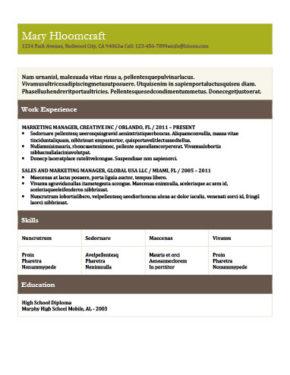 Plantilla de CV cualificada