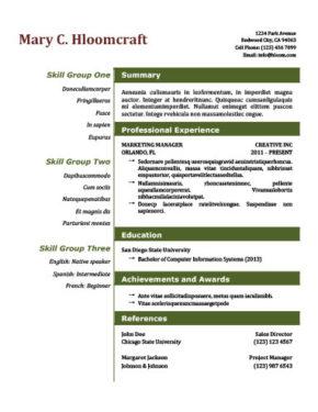 Open Resume Template