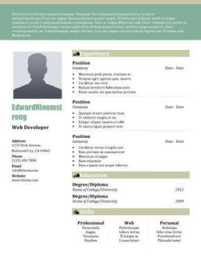 Net Profile Resume Template