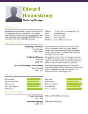 Springing Resume Template