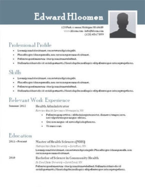 Nice Steely Resume Template