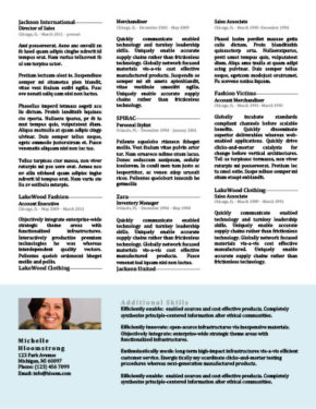 Page One Resume Template