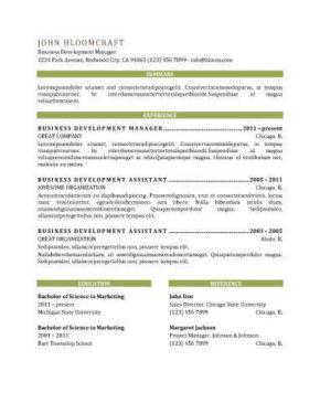 VIP Resume Template