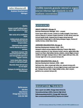 Modello di curriculum Ottima divisione blu