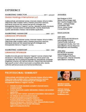 Plantilla de CV profesional y vivaz