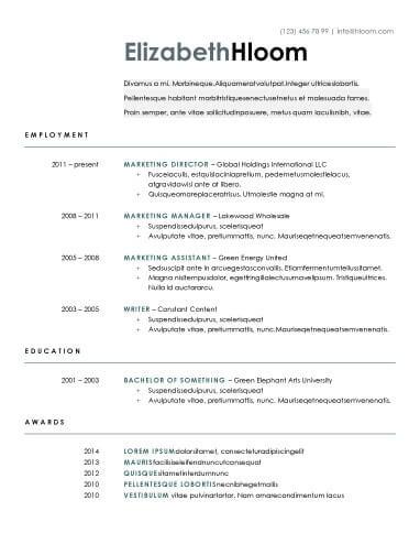 Blue Side OpenOffice Resume