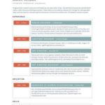 Vibrant Resume Template