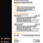 Modèle de CV noir et orange