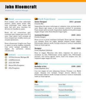 Modello di curriculum Blogging
