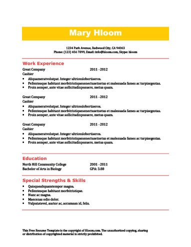 Quick Resume Template 27.04.2017