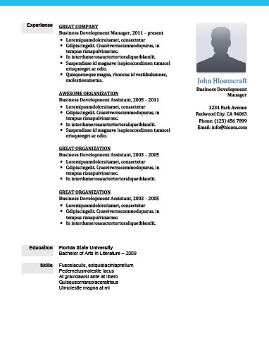 great experience resume template