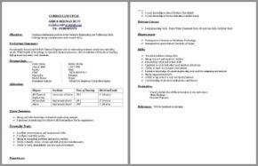 Chemical Engineer CV Template