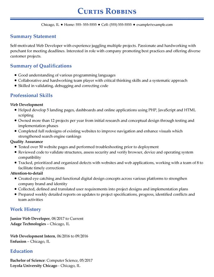 Sviluppatore di applicazioni web - Professionale