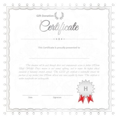 Printable Donation Certificates Templates - Donation gift certificate template