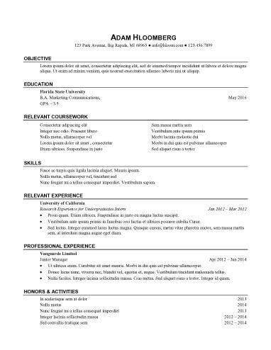 Internship Resume Sample 13
