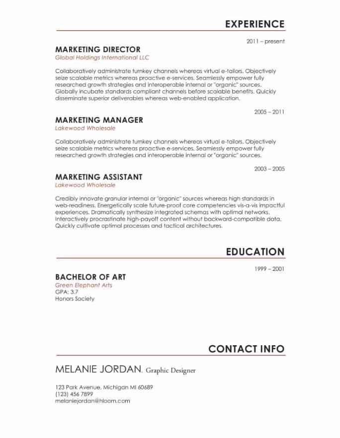 Next Level Resume Template
