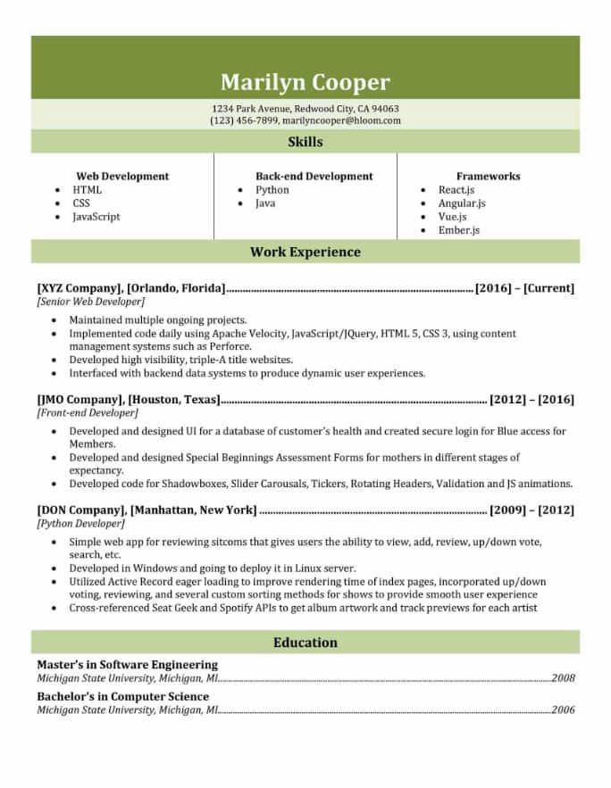 Polished Resume Template